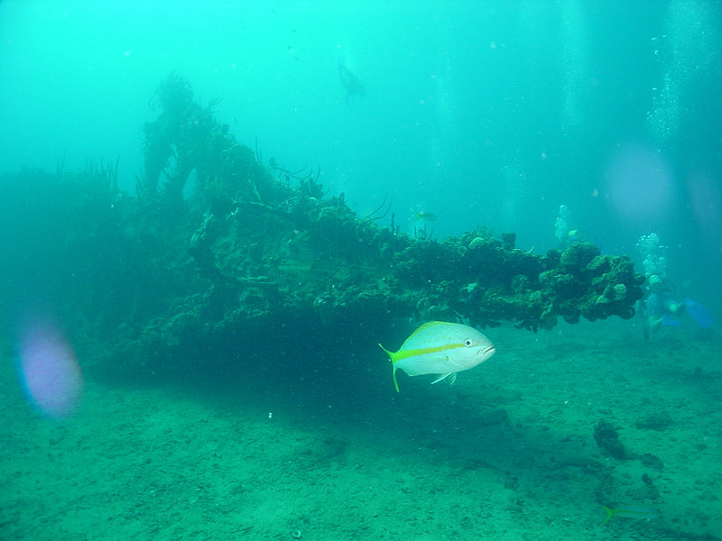 Shipwreck dives in the British Virgin Islands with Kenwood Travel
