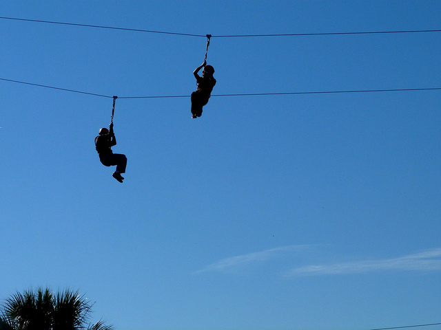 Zip line over alligators at Gatorland, try these activities in Orlando