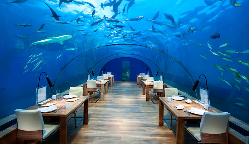 Maldives dining at Ithaa underwater restaurant.