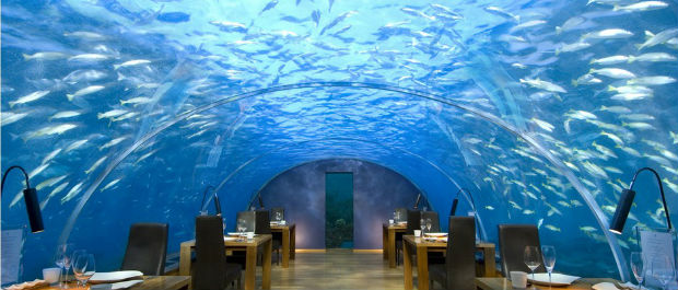 Maldives Underwater Restaurant