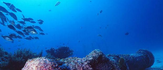 Scuba Diving Mauritius