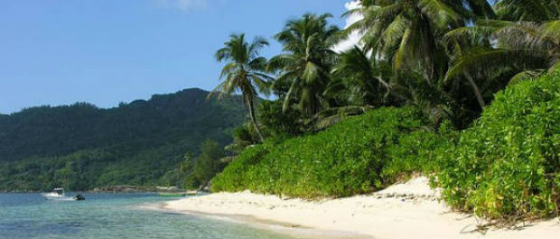 Seychelles Honeymoon