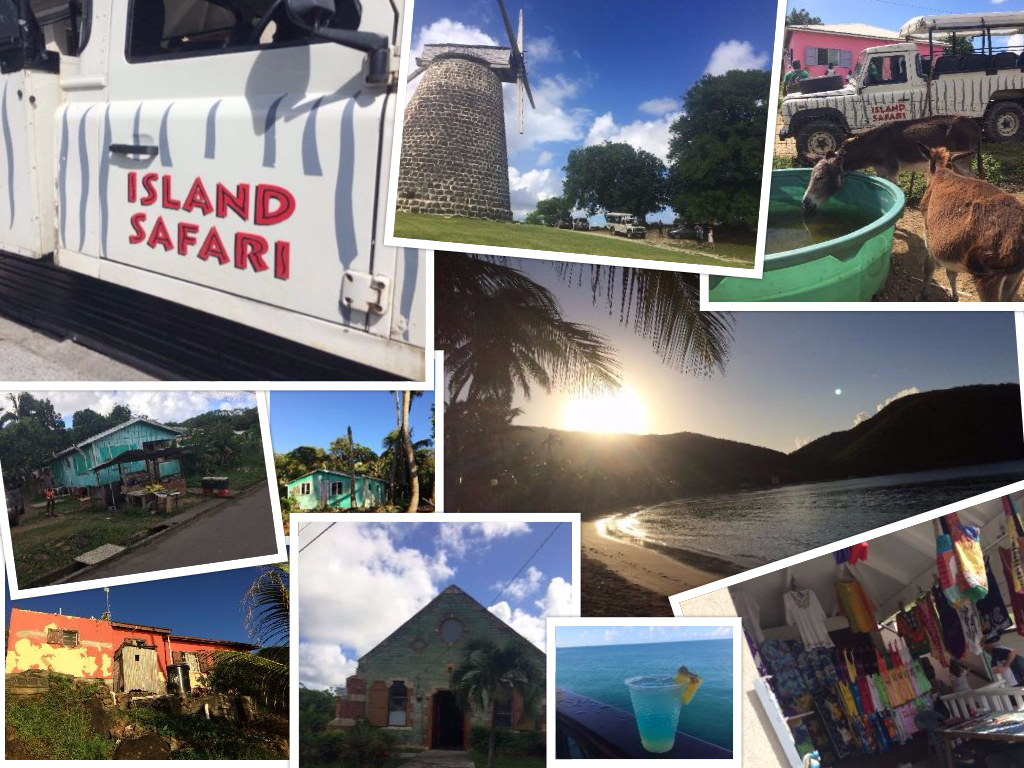 Island safari snapshots of Antigua