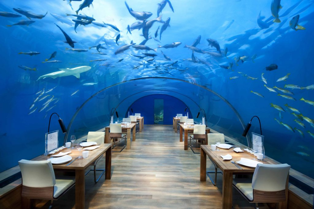 Underwater Maldives: Ithaa restaurant at the Conrad Maldives