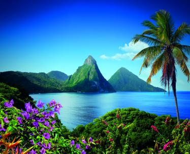 St. Lucia & Beyond